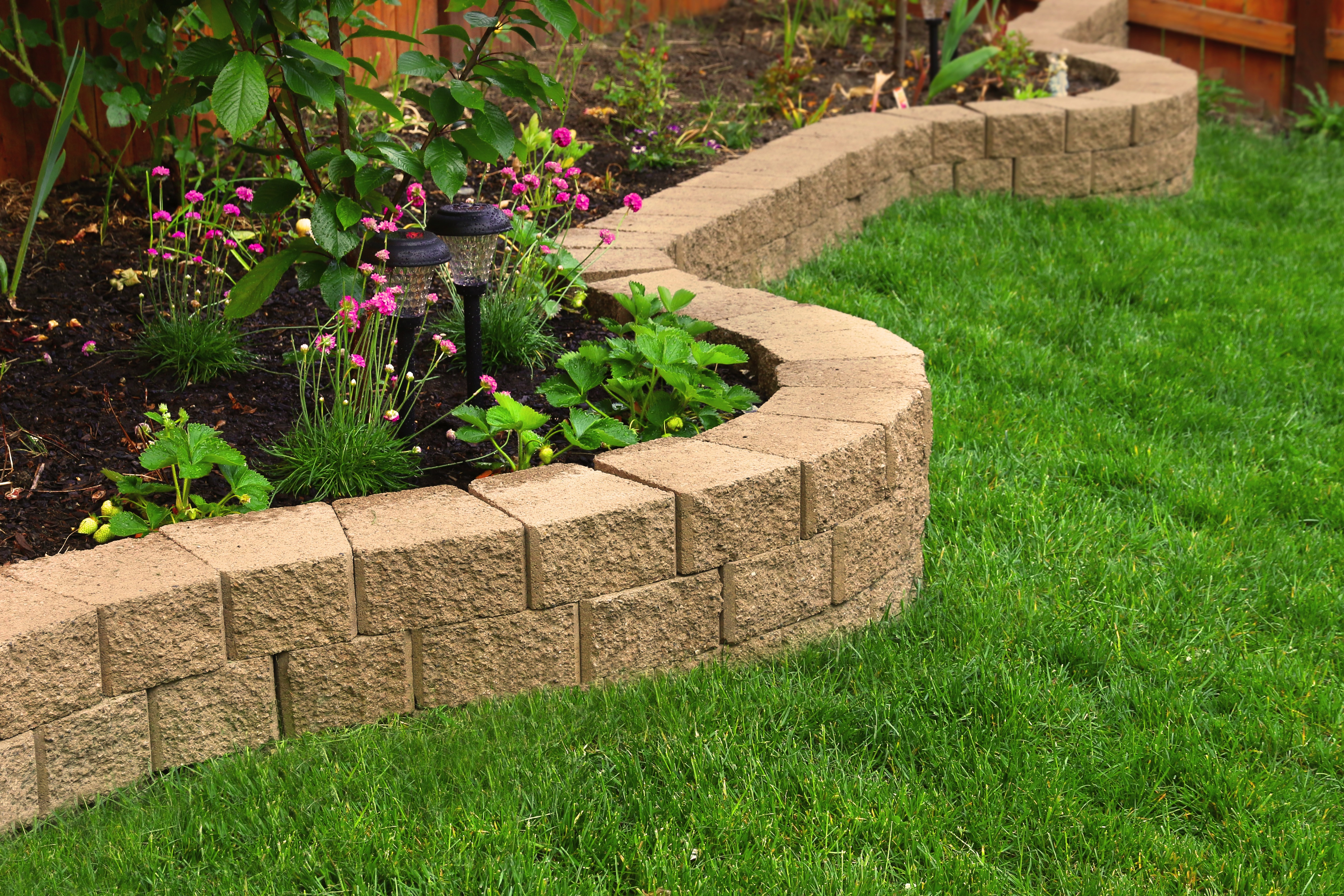 American Arbor Landscaping